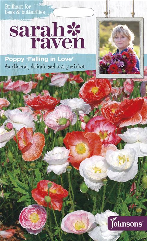 Poppy Falling In Love