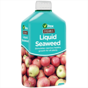 Organic Liquid Seaweed 500ml