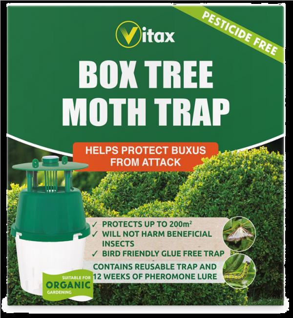 Box Tree Moth Trap.  1 trap