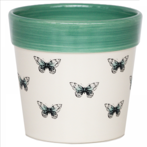 Cacti Planter Butterfly 13cm