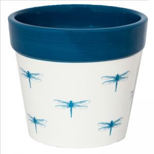 Cacti Planter Dragonfly 13cm