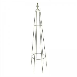 Priory Obelisk Sage - 1.7m