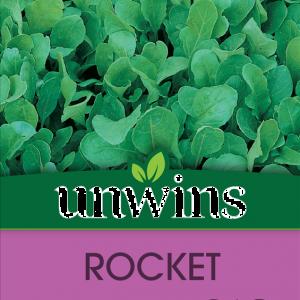 Herb Rocket