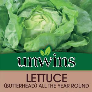 Lettuce (Butterhead)