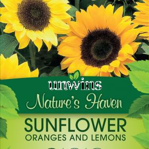 Sunflower Oranges and Lemons