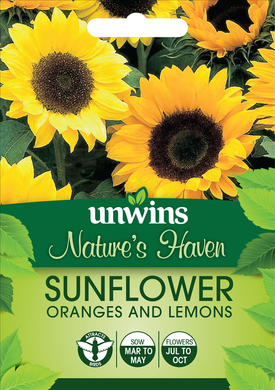Sunflower Oranges and Lemons
