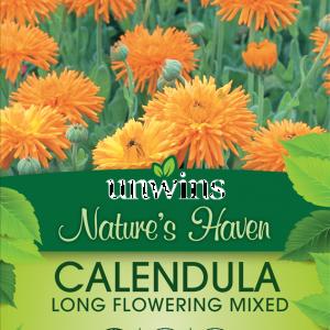 Calendula Long Flowering Mixed