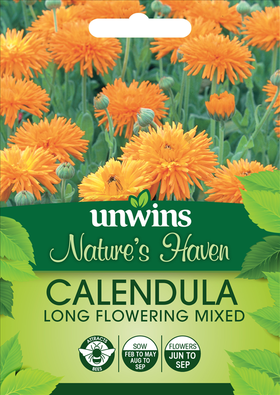 Calendula Long Flowering Mixed