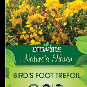 Birdsfoot Trefoil