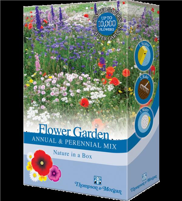 Flower Garden Annual & Perennial