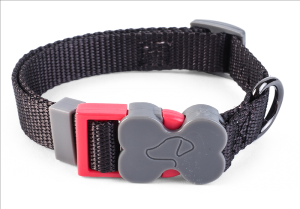 WalkAbout Jet Dog Collar - Large