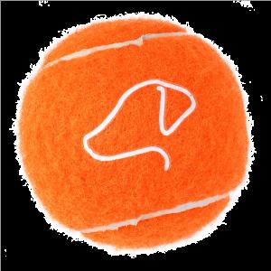 Pooch Tennis Balls 6.5cm  - 3 Pack