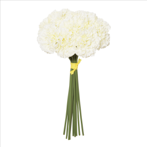 Cream Carnation Hand Tied