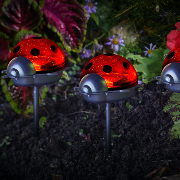 Ladybirds -LED  Triple Pack