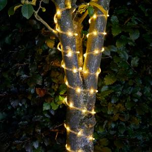 100 LED Rope Light 10.5m