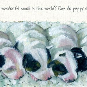 Eau de Puppy Card