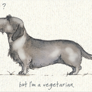 Sausage Dog' Card