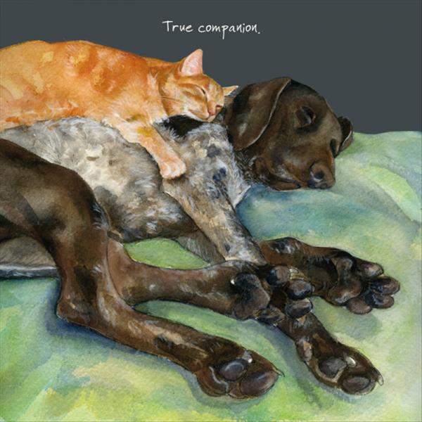 True Companion Card