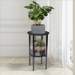 Terrarium and Plant Stand