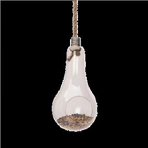 Hanging Lightbulb Terrarium