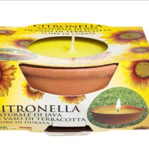 Citronella Small Terracotta Pot
