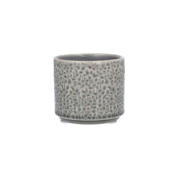 Grey Succulents Mini Pot Cover