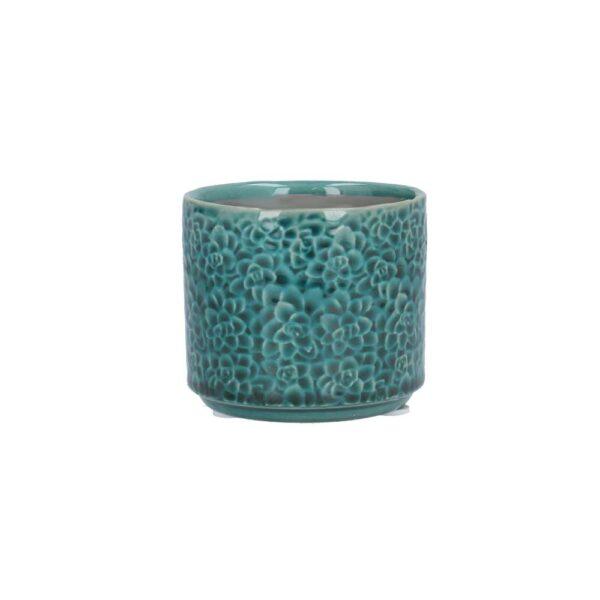 Teal Succulents Mini Pot Cover