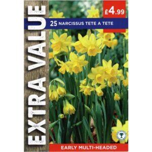 Narcissus Tete A Tete 25 Bulbs