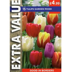 Tulip Garden Mix 15 Bulbs