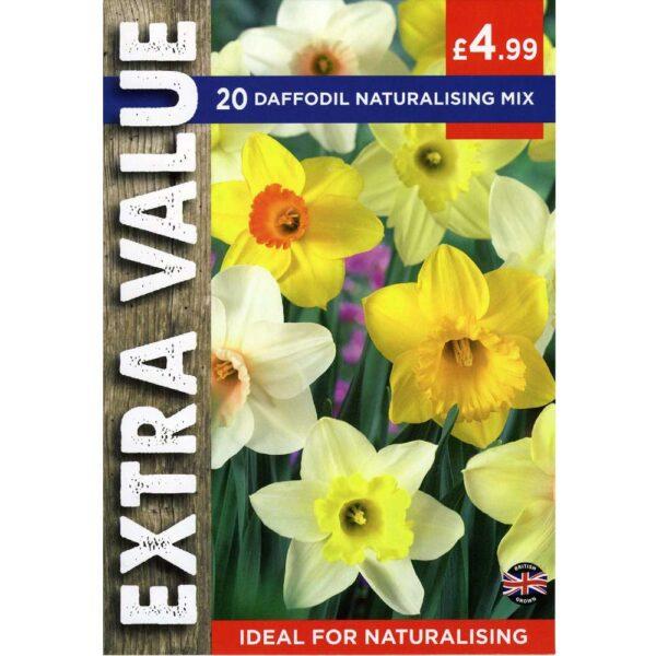 Narcissus Naturalising Mix 20 Bulbs