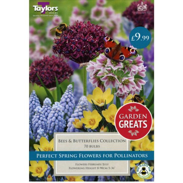Bees & Butterflies Collection 70 Bulbs