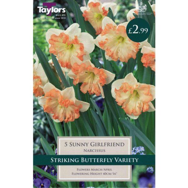 Narcissus Sunny Girlfriend 5 Bulbs