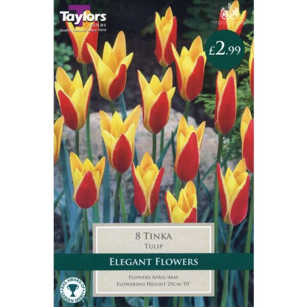 Tulip Tinka 8 Bulbs