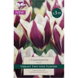 Tulip Chansonette 7 Bulbs