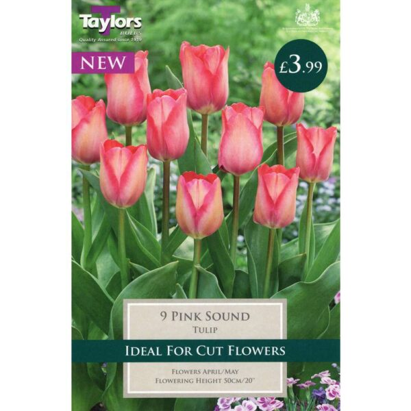 Tulip Pink Sound 9 Bulbs