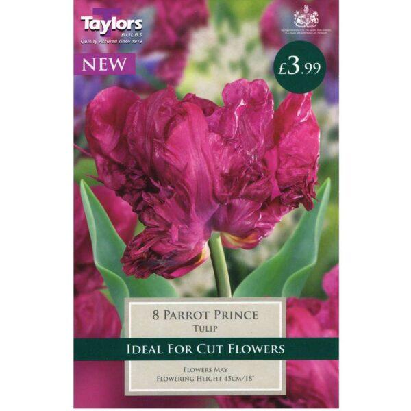 Tulip Parrot Prince 8 Bulbs