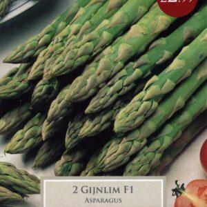 2 Asparagus Gijnlim